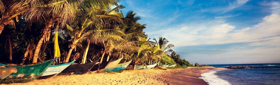 destiny_tour_operators_srilanka1